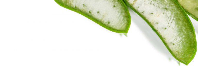 koko vera prirodni serum za sjaj kose od kokosovog mlijeka i aloe vere