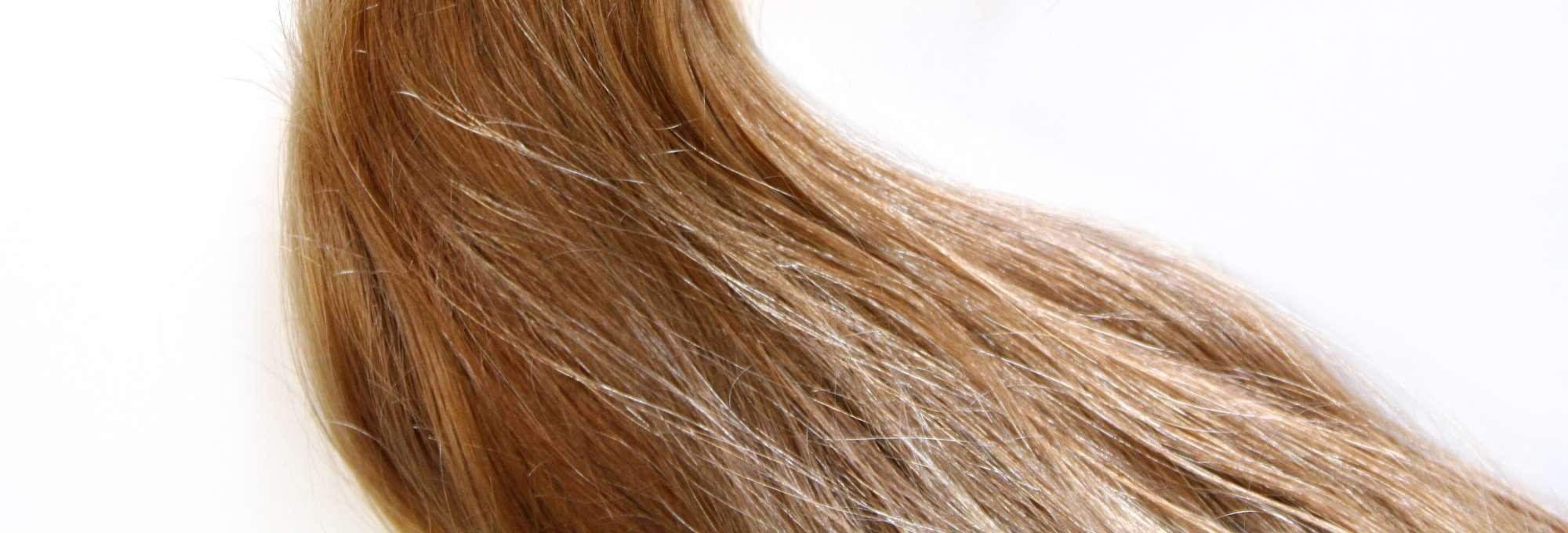 kviz poroznosti kose nisko porozna kosa visoko porozna srednje normalno zdravlje ose poroznost